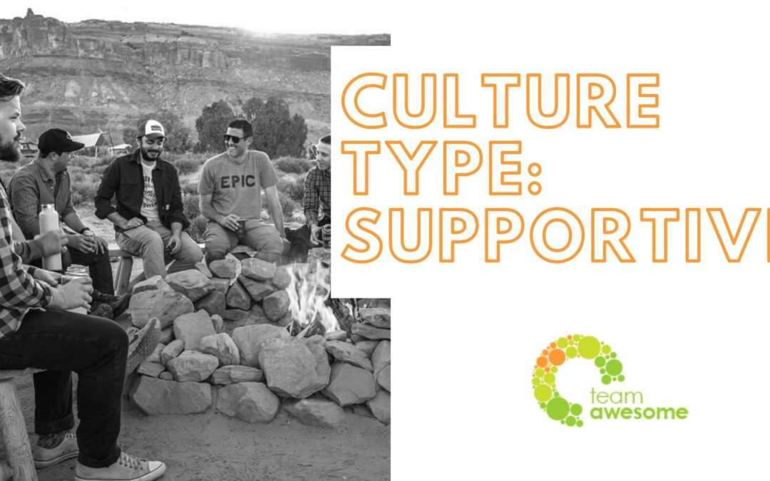 What Type of Culture is Your Team? Supportive Culture [1 of 4]